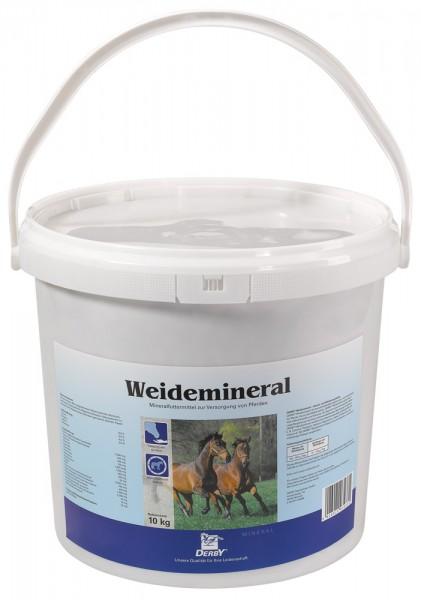 DERBY Weidemineral
