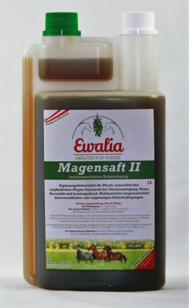 Magensaft II