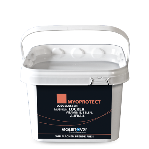 Myoprotect Powder
